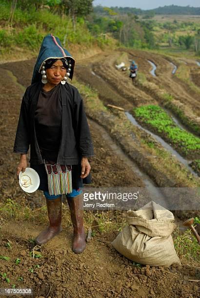 An Akha woman surveys her fields in rural Shan State Myanmar
