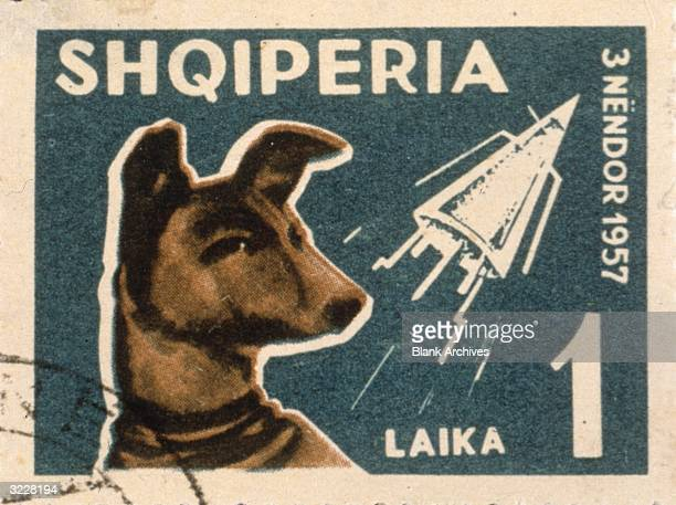 An Albanian postage stamp depicting Laika the dog sent into space on the Russian space satellite Sputnik Shqiperia is the local name for Albania