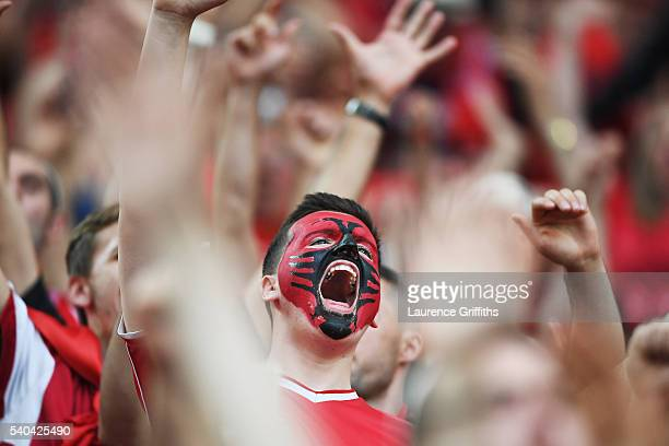 An Albianian supporter in good spirirts during the UEFA EURO 2016 Group A match between France and Albania at Stade Velodrome on June 15 2016 in...