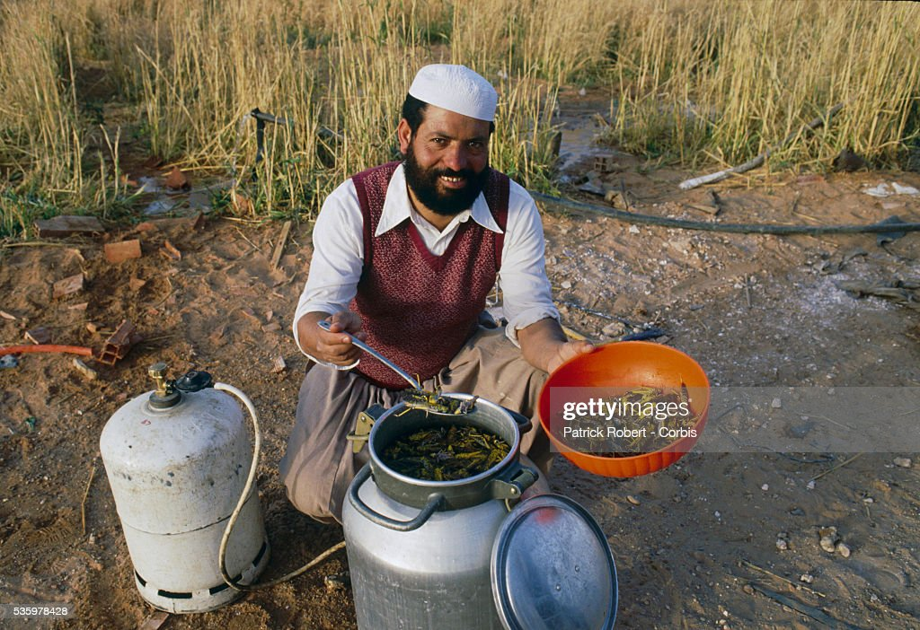 An Algerian man prepares salted desert locusts, which are first boiled, then dried. The invasion of locusts in Algeria, and throughout Africa, drastically reduced food production, forcing the government to provide food aid programs and emergency assistance to rural communities.