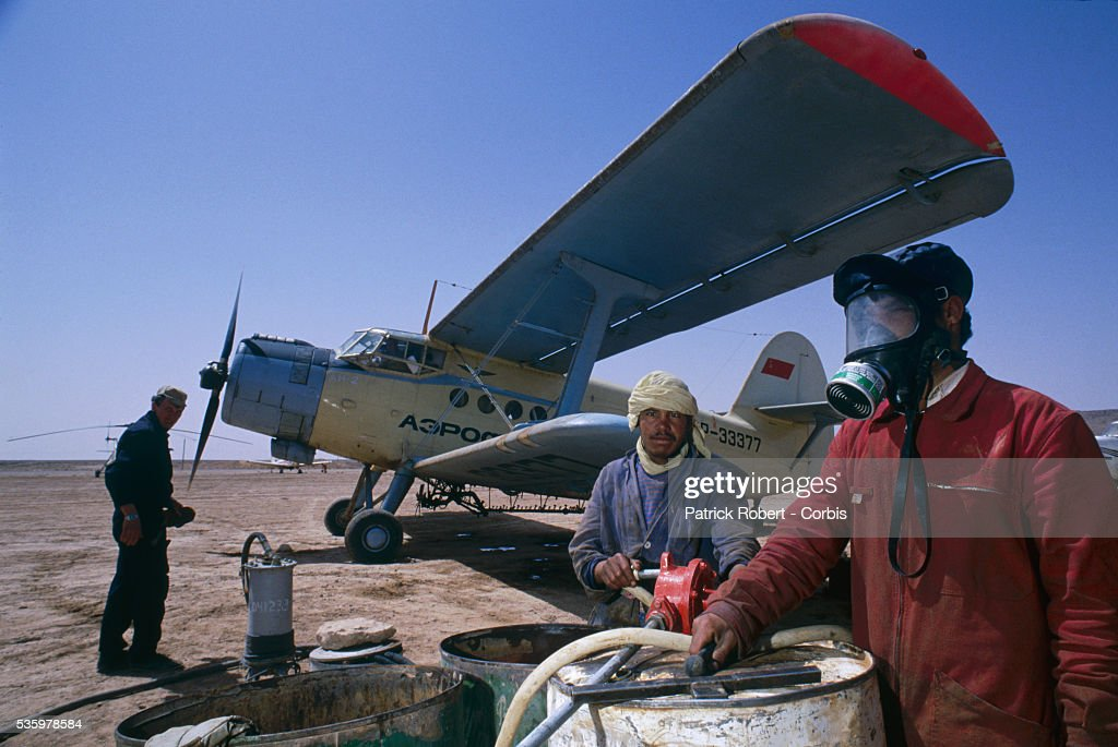 An Algerian man wears a gas mask near a propeller airplane used to spray pesticide over the land after a swarm of desert locusts invaded the Lagahout region of Algeria. The invasion of locusts in Algeria, and throughout Africa, drastically reduced food production, forcing the government to provide food aid programs and emergency assistance to rural communities.
