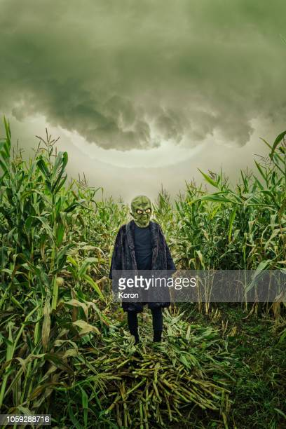 an alien in a cornfield - extrasolar planet stock pictures, royalty-free photos & images
