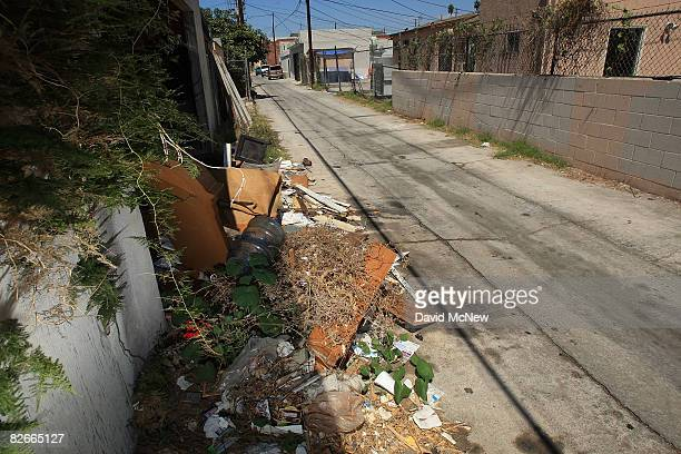 An alley runs along Western Avenue an area where an elusive serial killer has been dumping bodies since 1985 on September 4 2008 in the South Los...