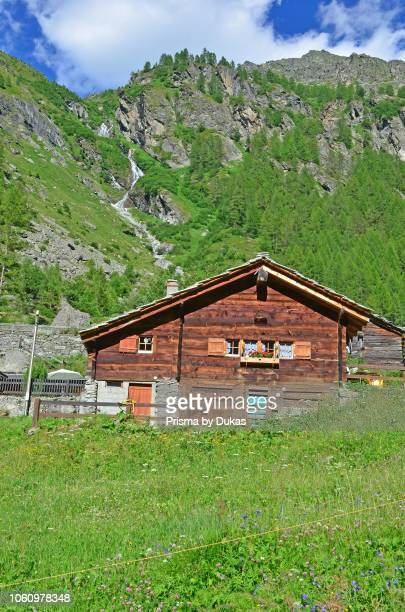 An alpine chalet in its flower filled meadow with forests and mountains in the background