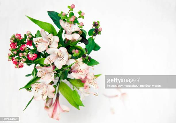 An alstroemeria bouquet view from high angle over a white background.
