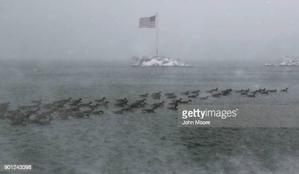 An American flag flies over an island as geese swim past on the Long Island Sound on January 4 2018 in Milford United States The bomb cyclone dumped...