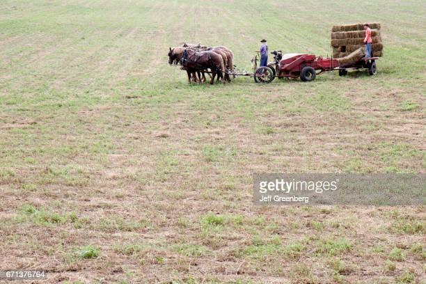 An Amish farmer on a horsedrawn hay baler