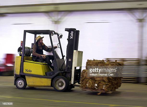 An Amish man drives a forklift loaded with bails of nicotine free tobacco at Trileaf Tobacco November 20 2002 in New Holland Pennsylvania With a...