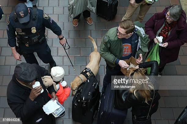 An Amtrak police K9 unit checks the baggage of passengers at Union Station March 22 2016 in Washington DC Security has been increased around the city...