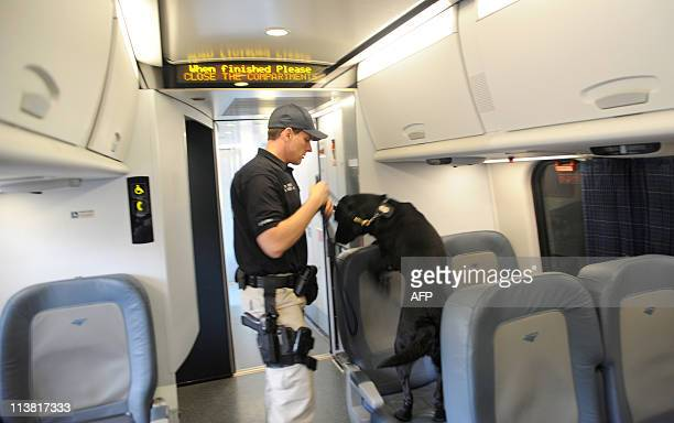 An Amtrak police officer and a sniffer dog check an Acela train at Union Station in Washington on May 6 five days after alQaeda head Osama bin Laden...