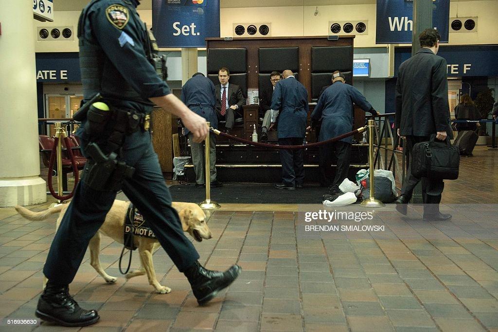 police dinot