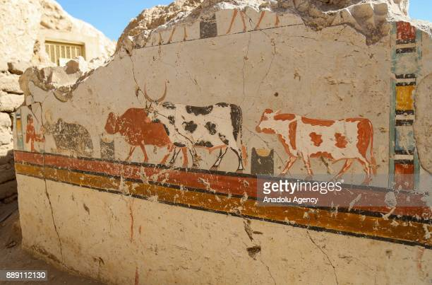 An ancient picture wall is found that belongs to the 18th Dynasty pharaohs in Dra Abu elNaga district of Luxor Egypt on December 09 2017
