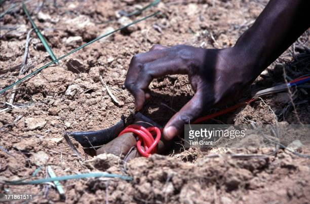 An Angolan deminer skillfully places a detonating charge close to an exposed landmine. This mine could blow off both legs and cause major damage to...