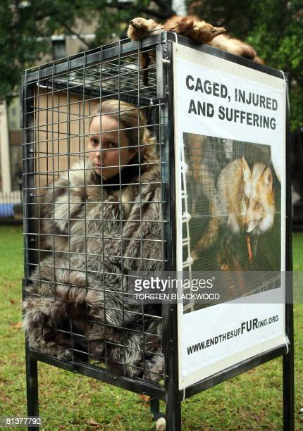 An animal liberation activist wears a fur coat in a wire cage at an antifur protest in Sydney on June 3 2008 The End The SufFURing campaign will take...