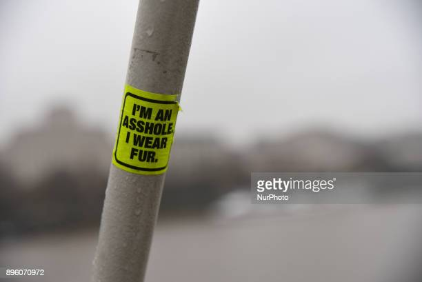 An animalist sticker is pictured as fog hangs low over London on December 20 2017 Forecasters have warned of likely travel disruption on Tuesday...