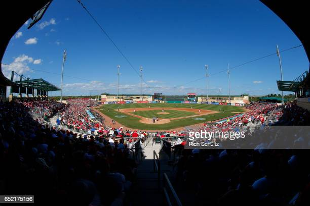An announced crowd of over 6000 fans watch the Atlanta Braves play the St Louis Cardinals during a spring training baseball game at Roger Dean...