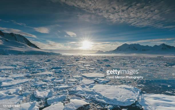 an antarctic peninsula peak sits alone stranded by sea ice. - 南極海 ストックフォトと画像