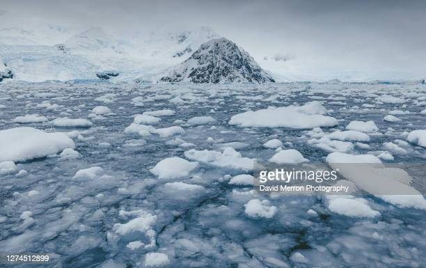 an antarctic peninsula peak sits alone stranded by sea ice. - ice floe stock pictures, royalty-free photos & images