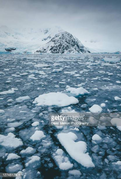 an antarctic peninsula peak sits alone stranded by sea ice. - 南極大陸探検 ストックフォトと画像