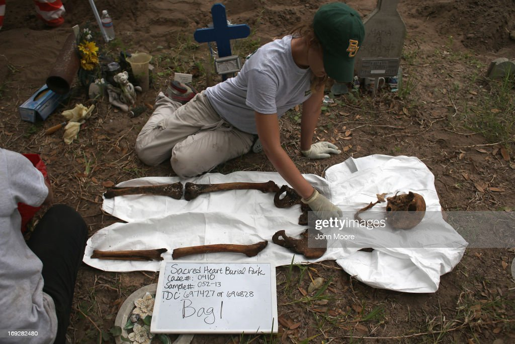 An anthropology student reassembles the bones of a suspected undocumented immigrant after the remains were exhumed from a gravesite on May 22, 2013 in Falfurrias, Brooks County, Texas. In Brooks County alone, at least 129 immigrants perished in 2012, most of dehydration while making the long crossing from Mexico. Teams from Baylor University and the University of Indianapolis are exhuming the bodies of more than 50 immigrants who died, mostly from heat exhaustion, while crossing illegally from Mexico into the United States. The bodies will be examined and cross checked with DNA sent from Mexico and Central American countries, with the goal of reuniting the remains with families.