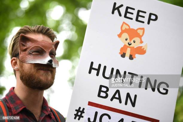 An anti fox hunting protesters is pictured before marching through the streets of London on May 29 to oppose British Prime Minister Theresa May's...