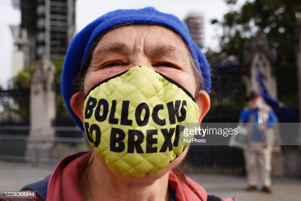 An anti-Brexit activist wearing a face mask reading 'Bollocks To Brexit' demonstrates outside the Houses of Parliament in London, England, on October...