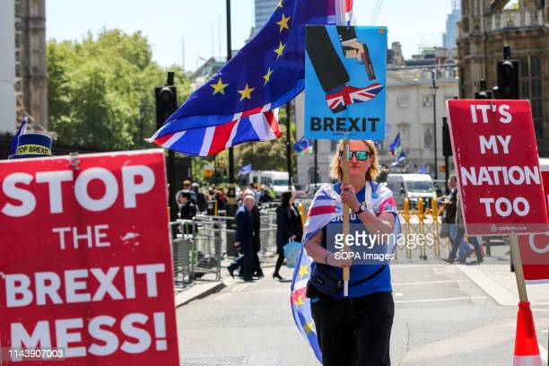 An antiBrexit demonstrator is seen with a European flag and a placard protesting outside the Houses of Parliament against the UK leaving the European...