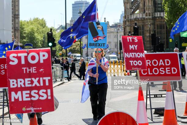 An antiBrexit demonstrator is seen with a placard protesting outside the Houses of Parliament against the UK leaving the European Union after Brexit...