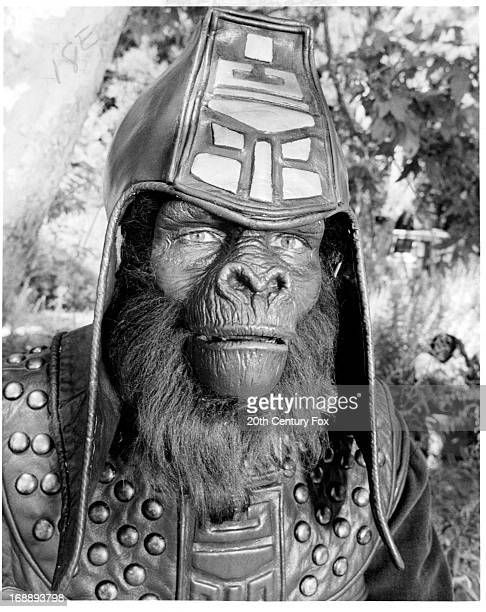 An ape in a scene from the film 'Planet Of The Apes' 1968