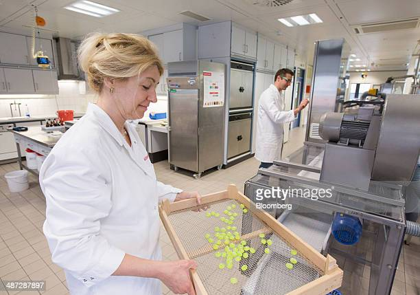 An application technologist carries a tray of hard candy samples in the Symrise AG factory sweet business unit in Holzminden Germany on Monday April...