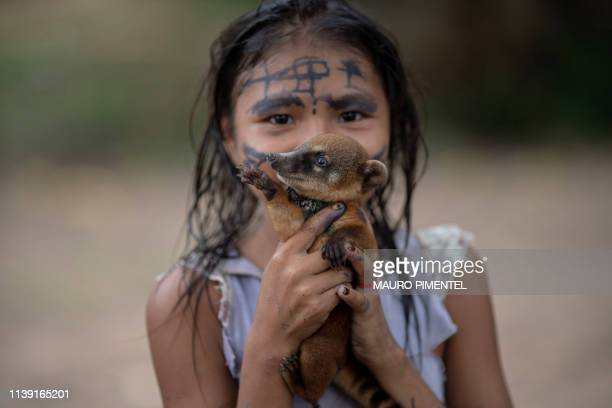 An Arara indigenous girl poses holding a baby racoon at the Laranjal tribal camp, in Arara indigenous land, Para state, in the northern Brazilian...