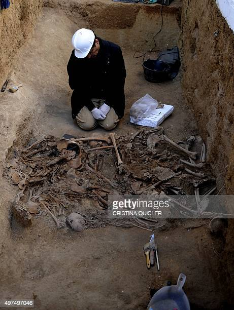 An archaeologist studies the bones of fourteen bodies of women killed by the forces of Francisco Franco in 1937 during the Spanish Civil War at a...