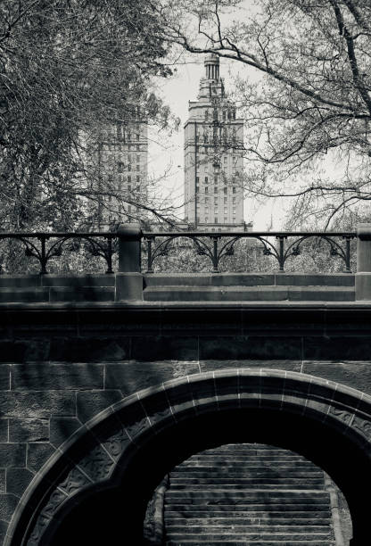 An architectural bridge and city view in Central Park