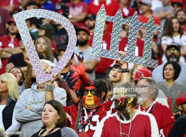 An Arizona Cardinals fan holds up a defense sign during the NFL football game between the Arizona Cardinals and the Oakland Raiders on November 18...