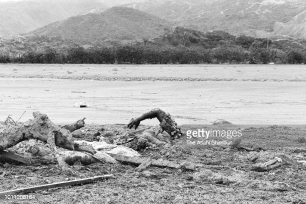An arm of a victim appears from mud as lahars triggered by the eruption of the Mt. Nevado del Ruiz destroyed the city on November 18, 1985 in Armero,...