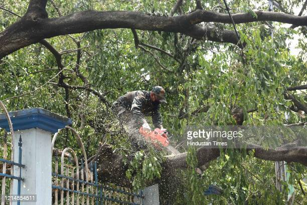 An army personnel cuts the branch of an uprooted trees to clear the road blockage after Cyclone Amphan at Southern Avenueon May 24 2020 in Kolkata...