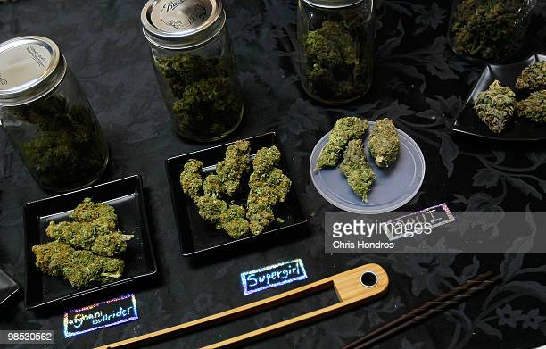 An array of marijuana samples are seen on a table at the Cannabis Crown 2010 expo in Aspen Colorado Colorado one of 14 states to allow use of medical...