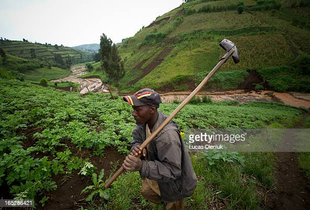 An artisanal miner retires from a morning's work in the Masisi territory North Kivu Democratic Republic of Congo