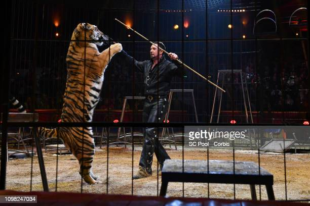 An artist and a Lion perform during the Gala Ceremony of the 43rd International Circus Festival of MonteCarlo on January 22 2019 in Monaco Monaco