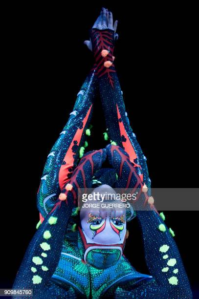 An artist of the Canadian entertainment company 'Cirque du Soleil' performs during a press preview of the show 'TOTEM' in Sevilla on January 24 2018...