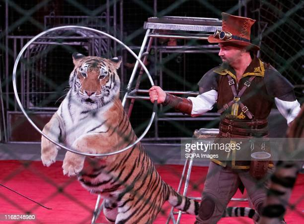 An artist performs with a tiger during the presentation of the new fantasy steampunk circus show 'Pendulum of Time' at the Ukrainian National Circus...
