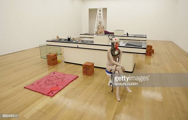 An artwork by British artist Cathy Wilkes entitled I Give You All My Money is pictured during a press view for the 2008 Turner Prize shortlist at the...