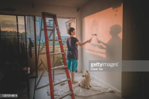 an asian chinese mid adult female painting her living room, apartment renovation during sunset with her toy poodle