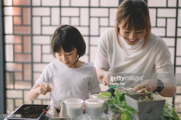 an asian chinese mother tending plant at her house with her daughter bonding time during weekend leisure