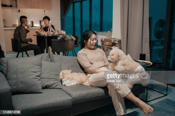an asian chinese teenager girl watching tv at home on sofa with her pets while her mother and brother at dining room having meals at night - small apartment stock pictures, royalty-free photos & images