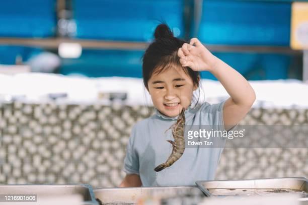 魚市場のシーフードトレイから虎のエビを拾うアジアの中国の若い女の子 - ウシエビ ストックフォトと画像