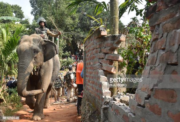 An Assam forest department official uses an elephant to demolish illegal constructions inside the Amchan Wildlife Sanctuary during an eviction drive...