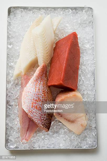 An assortment of fish fillets on ice
