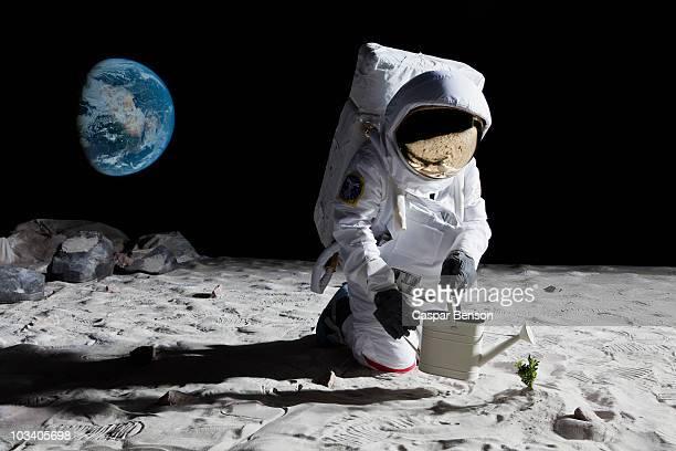 an astronaut gardening on the moon - moon surface fotografías e imágenes de stock