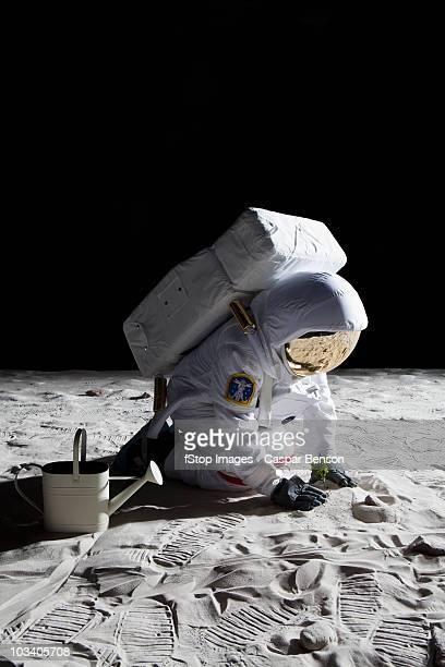 an astronaut gardening on the moon - jardinier humour photos et images de collection